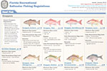 Saltwater Regulations Chart
