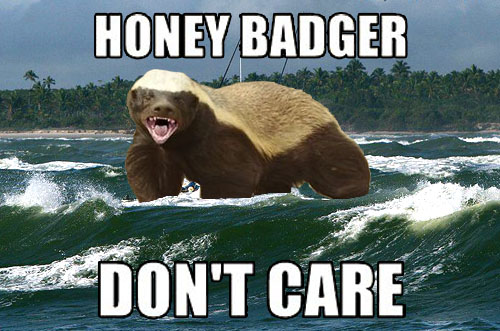 Badger_Waves.jpg